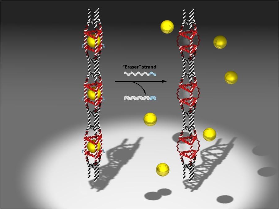 NanotubesSleiman